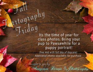 Fall Furrtography Friday